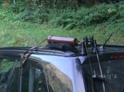 Nun lassen sich die Hirsche in ihrer Brunft direkt betrachten. Testosterongesang hallt durch die Wälder...